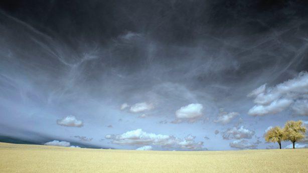 anyl4psd against desertification